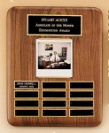 American Walnut Photo Perpetual Plaque Sales Awards