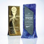 Double Fusion Sales Awards