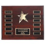 Perpetual Star Plaque Star Awards